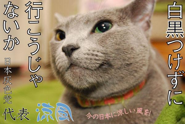 suzu100630-1.jpg